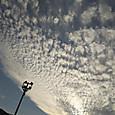 今日も、きれいだなあ。雲。